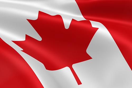 Import Export Data Canada
